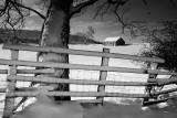 20091218 - Snowy