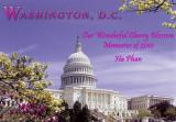 2010 - Cherry Blossoms in Washington, D.C