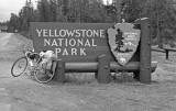 Yellowstone Nat. Park
