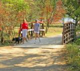 The hike and bike trail