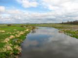 Krajobrazy biebrzańskie(IMG_6485.jpg))