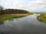 Krajobrazy biebrzańskie(IMG_6487.jpg)