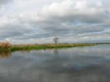 Krajobrazy biebrzańskie(IMG_6490.jpg)
