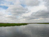 Krajobrazy biebrzańskie(IMG_6493.jpg)
