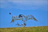 Pouakai, the Haast eagle
