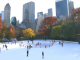 wolman rink and beyond
