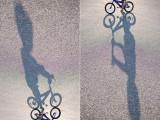 bikeboard2web.jpg