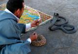 Snake Charmer II