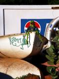 Kermit in Khartoum