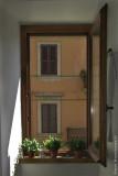 Window, Ronciglione, Italy 2009