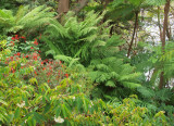Lex and Ruby Graham's Garden