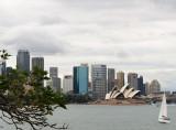 Sydney from near Cremorne Wharf
