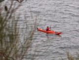 Hatted kayaker