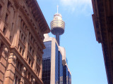 A glimpse of Sydney Tower