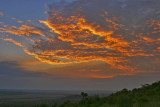 Masai Mara sunset at Sundowners.jpg