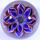 Incredi-Petal Size: 1.61 Price: SOLD