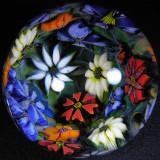 Flower Grottumbo Size: 2.74 Price: SOLD