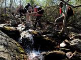 creek along trail.jpg