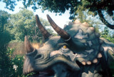 014_triceratops.JPG