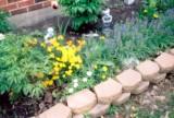 021_garden2.JPG
