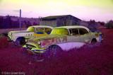 1955 Buicks