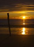 The Stick at Sunrise_3522 copy.jpg