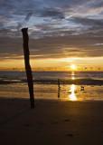 The Stick at Sunrise_3528 copy.jpg
