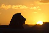 Rochester Bridge Lion Sunset_0729.jpg