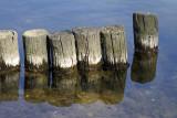 Lakeside Breakwater_2527.jpg