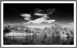 Merritt Island refuge Florida