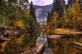 fall_2007