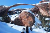 Arches National Park 533.JPG