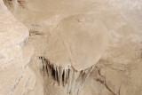 Great Basin 33.JPG