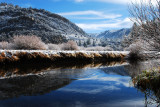 Frosted River Banks