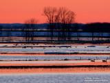 coucher de soleil IMG_2687-800.jpg