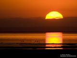 coucher de soleil  IMG_2820-800.jpg