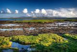 Tawin Island Co Galway