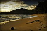 Alone on the Beach at Sunrise
