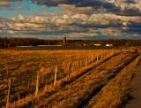 Farm in Lawrence County