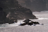 Galapagos-SDIM0622.jpg