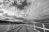 Petone Pier