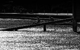 14 April 2010 - BNW at Lowry Bay