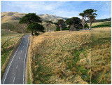 Ohariu Valley Section