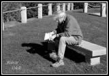 READING IN BOOTH BAY.jpg