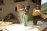 Separating rice from hull;  Rinchengang Village