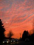 2007-11-23 Vild sky