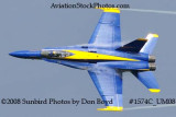 Blue Angel #7 at the 2008 Great Tennessee Air Show practice show at Smyrna aviation stock photo #1574C