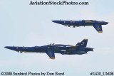 The Blue Angels at the 2008 Great Tennessee Air Show practice show at Smyrna aviation stock photo #1420