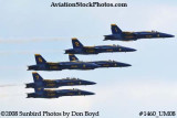 The Blue Angels at the 2008 Great Tennessee Air Show practice show at Smyrna aviation stock photo #1460