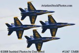 The Blue Angels at the 2008 Great Tennessee Air Show practice show at Smyrna aviation stock photo #1547